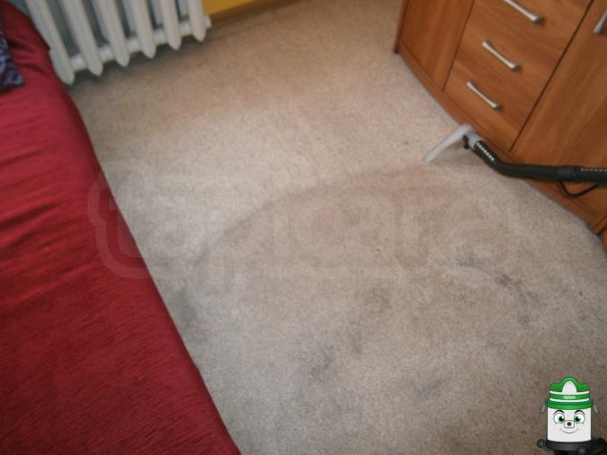 czyszczenie wykładziny Katowice